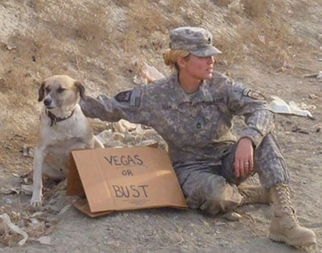 "Army Sgt. Sarah Dean's fellow soldiers in Kabul, Afghanistan, took this photo as part of a fundraising appeal to get ""Poptart,"" the kuchi she'd befriended there, home."