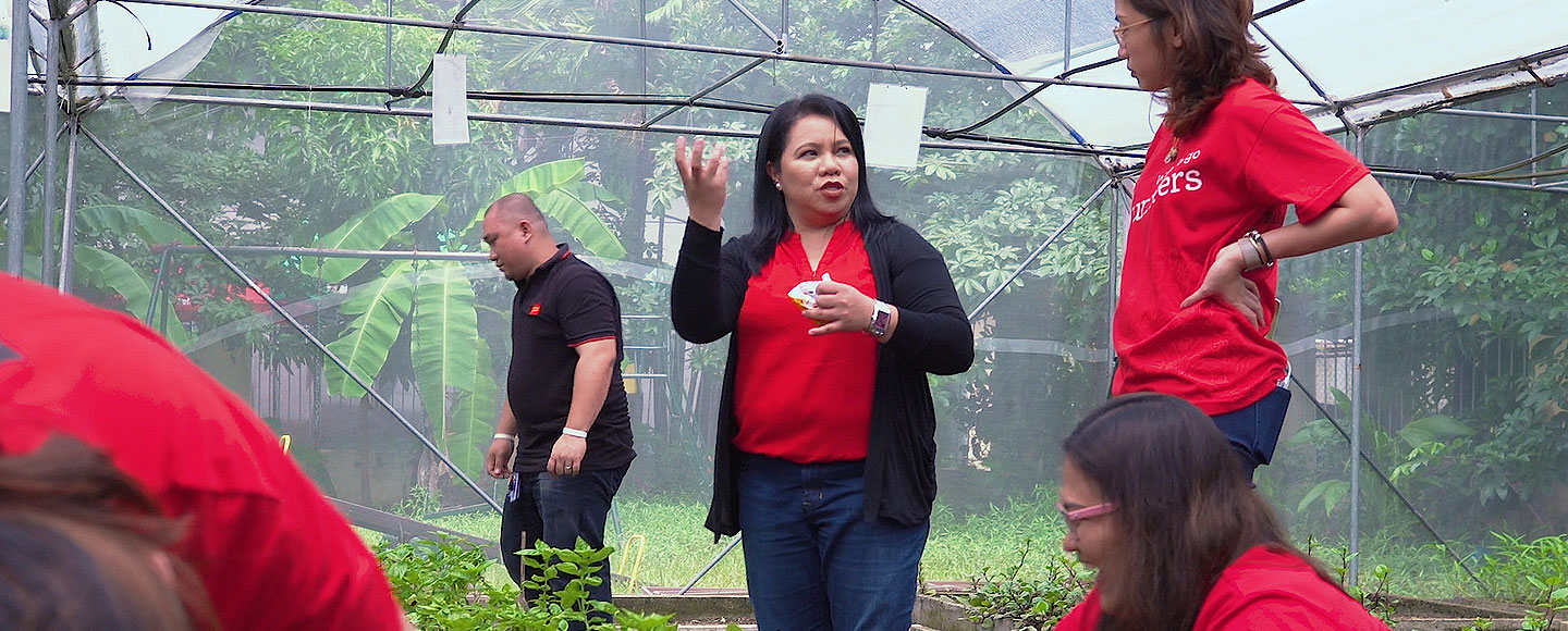 Volunteers work in garden greenhouse. There is a man in the background wearing a black shirt, two women talking, and another woman kneeling.